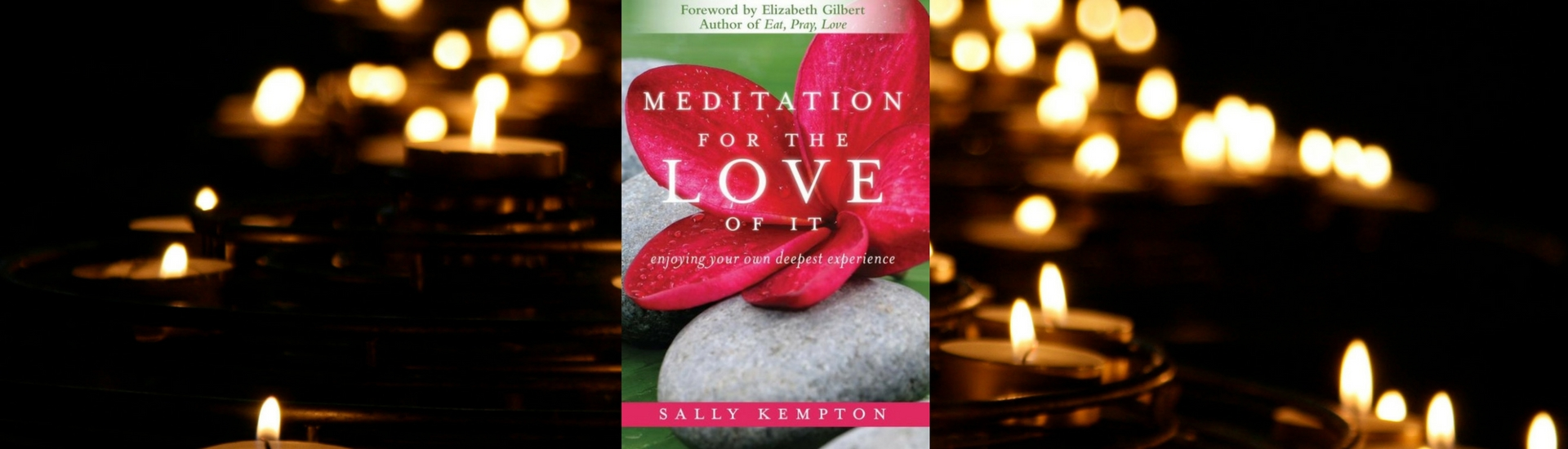 Book Review: Sally Kempton's Meditation for the Love of It